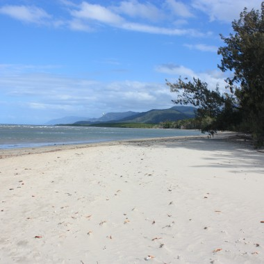 Cairns, port Douglas et la Rainforest